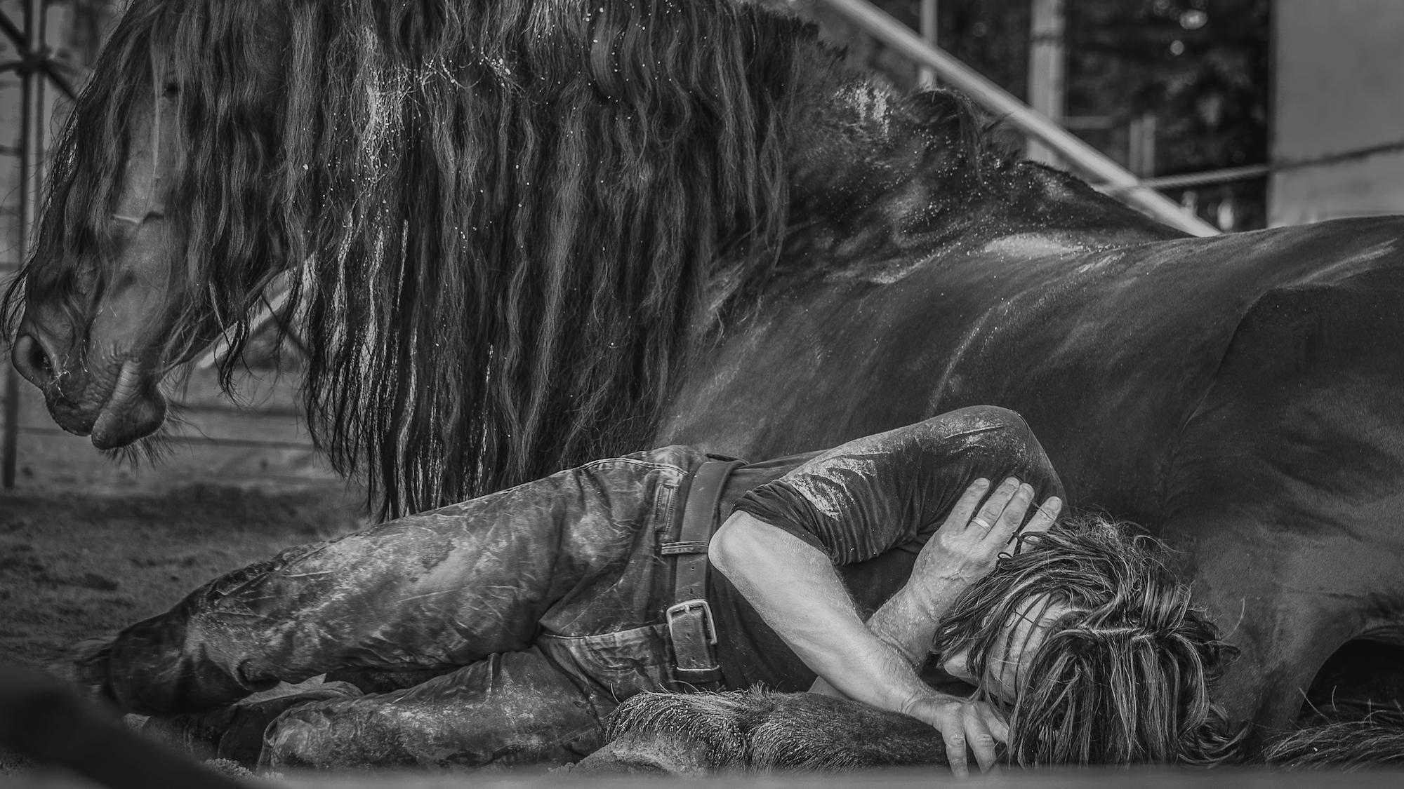 Ma bête noire © Alem Ramizovic