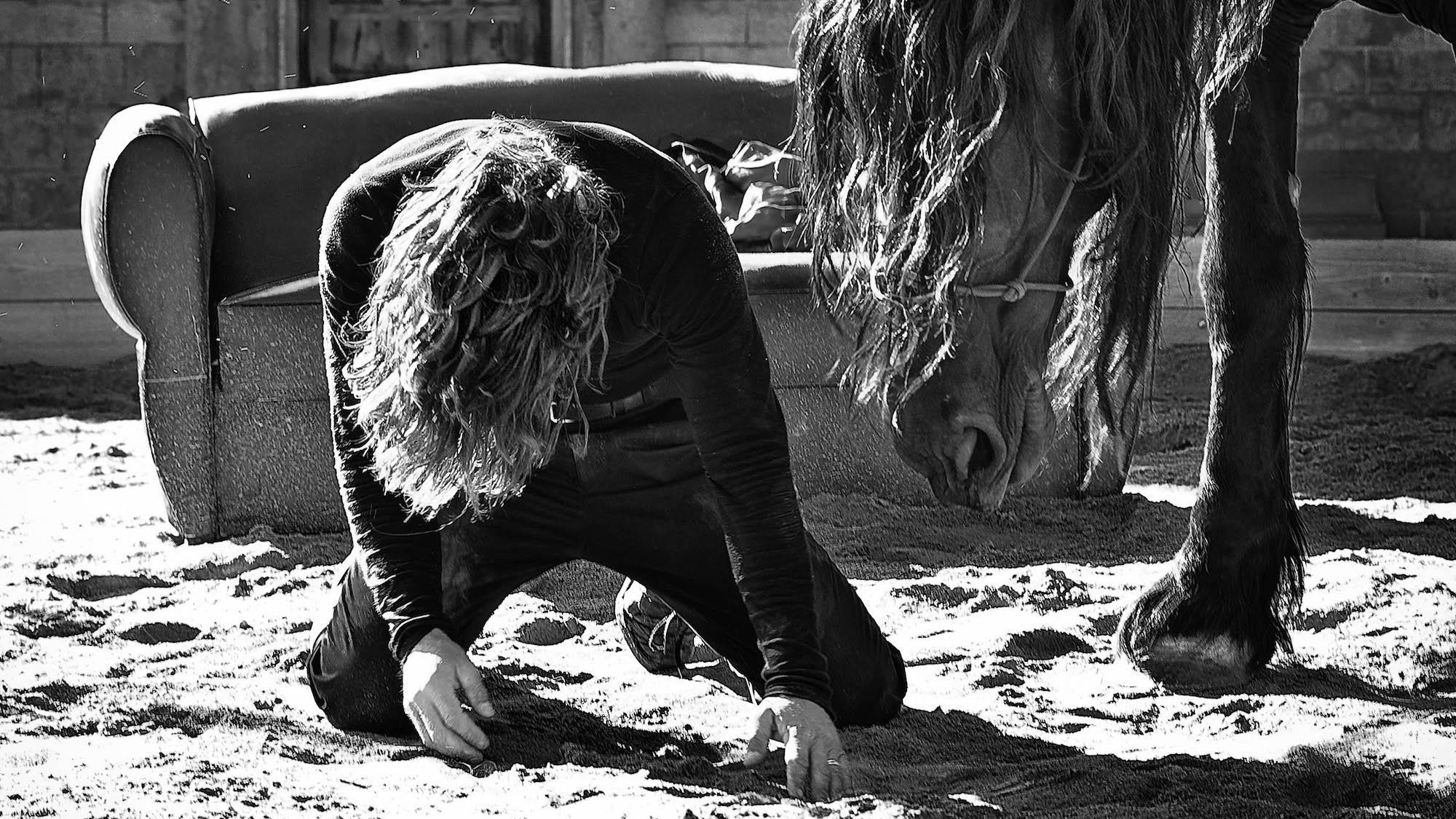 Ma bête noire © François Chaussebourg